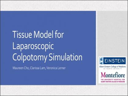 A Novel Tissue Model Using Porcine Stomach for Laparoscopic Colpotomy Simulation