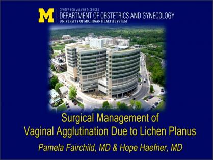 SURGICAL MANAGEMENT OF VAGINAL AGGLUTINATION DUE TO LICHEN PLANUS