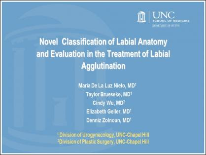 NOVEL CLASSIFICATION OF LABIA ANATOMY IN THE EVALUATION AND TREATMENT OF VAGINAL AGGLUTINATION