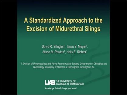 A STANDARDIZED APPROACH TO THE EXCISION OF MIDURETHRAL SLINGS