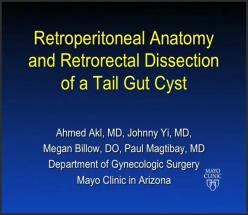 RETROPERITONEAL ANATOMY AND RETRORECTAL DISSECTION OF A TAIL GUT CYST