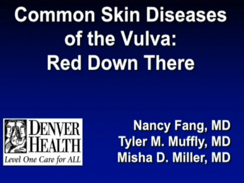 COMMON SKIN DISEASES OF THE VULVA: RED DOWN THERE