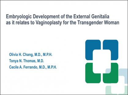 Embryologic Development of the External Genitalia as it relates to Vaginoplasty for the Transgender