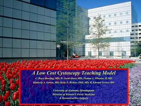 A LOW COST CYSTOSCOPY TEACHING MODEL