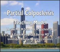 PARTIAL COLPOCLEISIS: A TEACHING MODEL