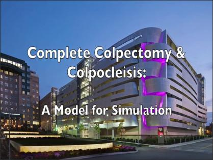 COMPLETE COLPECTOMY AND COLPOCLEISIS: A MODEL FOR SIMULATION