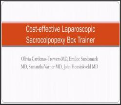 Cost–effective Laparoscopic Sacrocolpopexy Box Trainer